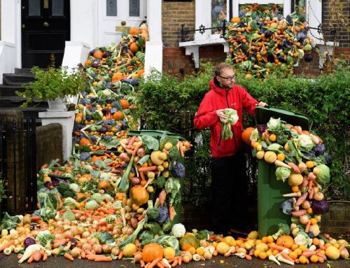 Food waste falls by 7% per person